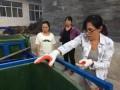 海归女硕士回农村推广垃圾分类,被白岩松在央视点名!