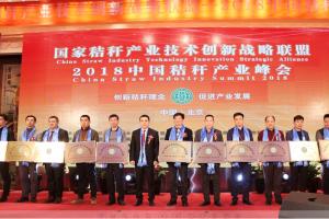 国家秸秆产业联盟成功举办2018中国秸秆产业峰会