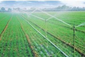 实施节水灌溉真的很难吗?那是你没用对方法