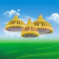 防爆免维护低碳LED照明灯20W 30W 40W
