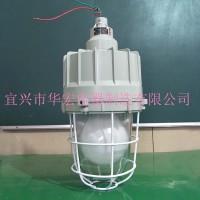 防爆防腐无极灯 GCD5011隔爆型防爆灯