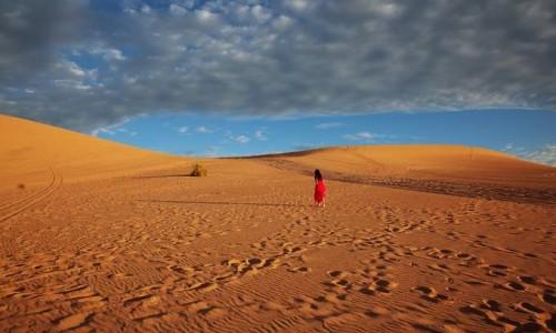 新设备可在沙漠收集空气中的水