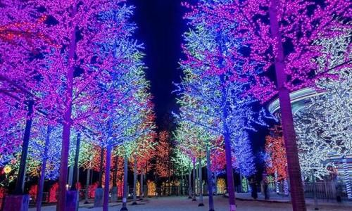 当石墨烯应用到LED照明上时,世界都会变得不一样