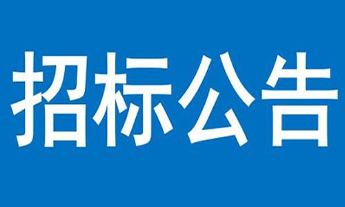河北雄安新区智能电池储能站前期研究项目招标公告