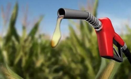 """利好,92号汽油要全换成""""玉米调和油""""了"""