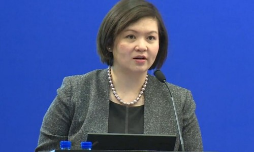 美国能源部中国办公室傅维君副主任在清洁交通政策与技术高峰论坛致辞