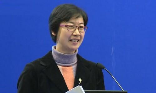北京节能环保中心李晓丹副部长在中美清洁交通政策与技术高峰论坛发言