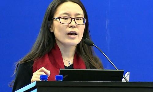 北京交通行业节能减排中心王书玲在中美清洁交通政策与技术高峰论坛发言