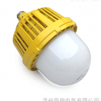 低能耗50WLED防爆灯;油库GCD616防爆平台灯