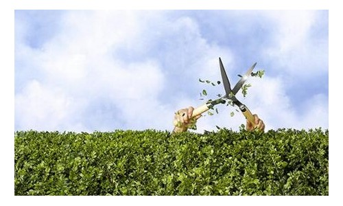 东方园林:保持PPP业务稳健 布局危废处置业务