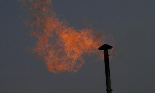 新天然气:天然气分销主业实际利润增长20%以上