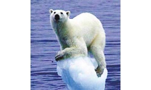 未来5年气候会如何变化与对人类有什么影响