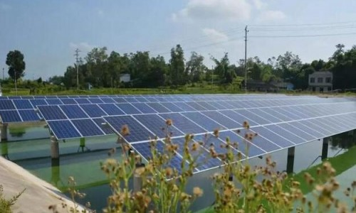 水上发电,水下养鱼!梁平区首个渔业光伏发电项目建成将投用!