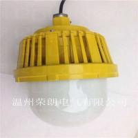BPL8766-60W加工车间LED防爆灯