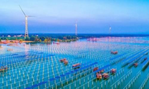 领跑·创变·赋能 2018首届中国光伏产业领跑论坛隆重举行