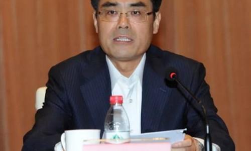 原国网董事长舒印彪担任华能董事长