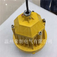 IIC级防爆平台灯 DGS48LED防爆灯