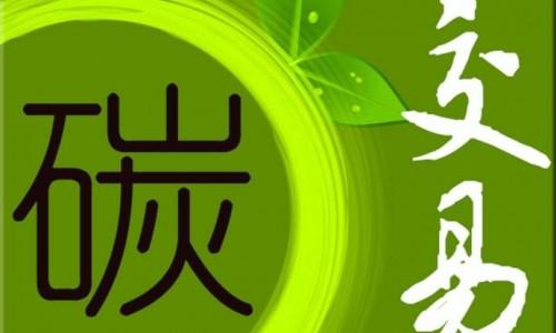 国际能源署署长:中国碳市场将为发展中国家树立榜样