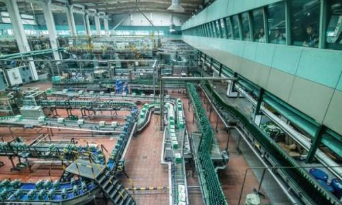 """青岛啤酒创新行业节能减排降耗 铸造""""绿色工厂"""""""