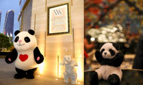 与自然共生 蓉城多品牌跨界合作助力环保节能