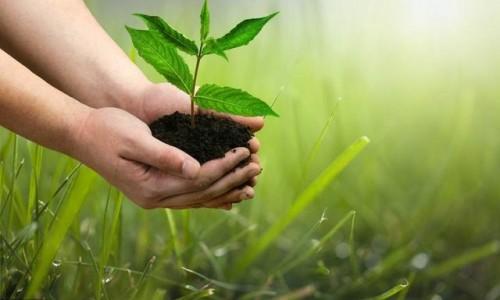 以5个节能环保项目谈石家庄的绿色经济丨