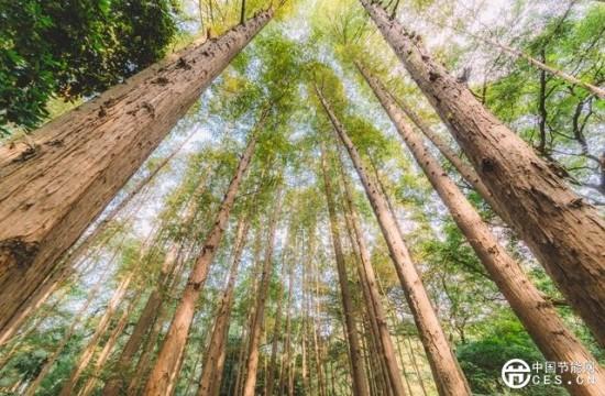 环保政策热潮掀起,激发环境监测产业活力