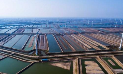 江苏大丰:海上风电节能又环保