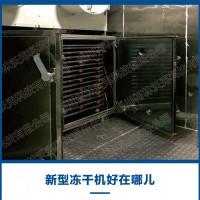 真空冻干机 生产型节能真空冷冻干燥机冻干菇类菌类