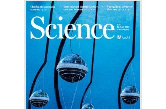 甲烷到底泄漏了多少?SCIENCE告诉我们