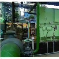 无刷双频高压电机低压变频调速系统