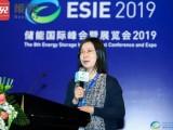 刘明明:电力需求侧资源的市场参与和价值体现