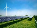 黑龙江新能源利用率高达96.2% 创历史最好水平