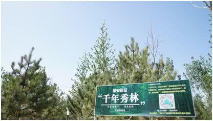 """�近平�L出""""天�{山�G水清""""的江山��景�D"""