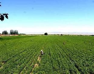 我国农业清洁生产的发展对策
