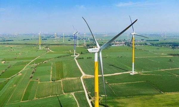 """秦海岩:""""十四五""""风电发展仍需政策支持"""