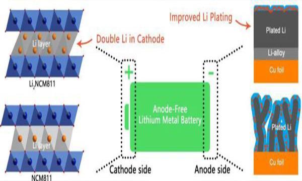 储能|高能量密度无负极锂金属电池研究进展