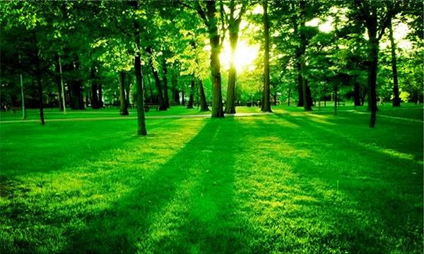 """从""""碳账户""""到碳市场 绿色发展寻找最优路径"""