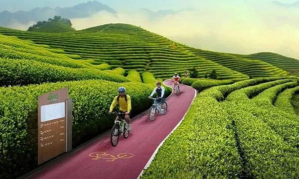 关于中国碳达峰、碳中和实现路径的顶层设计