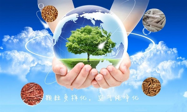国家发改委印发《2021年生物质发电项目建设工作方案》