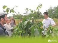 南疆四地州举办高效节水农业实用技术培训班