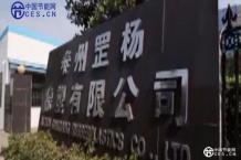 泰州市罡杨橡塑有限公司企业形象宣传片